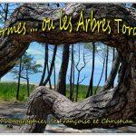 001-affiche-arbres-tordus-internet