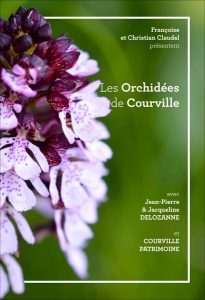 affiches-exposition-orchidees-site
