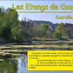 affiche-expo-etangs-courville-internet